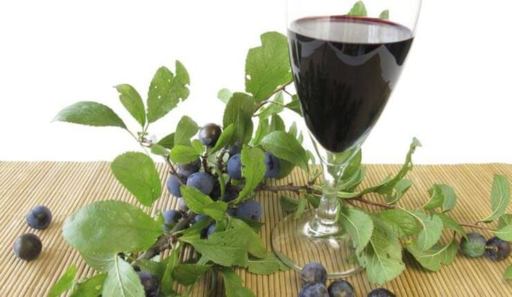 Рецепт приготовления домашнего вина из терна