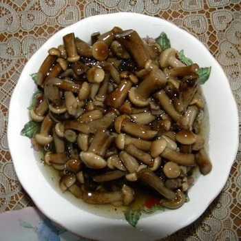 Как замариновать отварные замороженные грибы. маринованные опята из замороженных грибов. чтобы замариновать замороженные боровики нужно