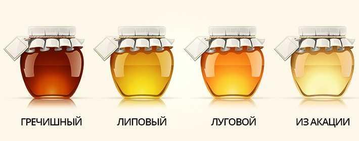 Почему мед кристаллизуется? вопрос задают тысячи покупателей меда.