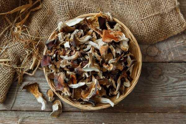 Сушеные шампиньоны: свойства и калорийность, подготовка и сушка, хранение