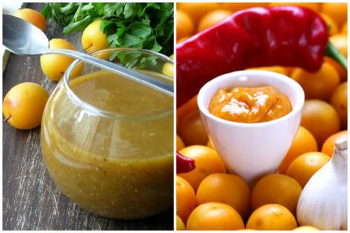 Что такое ткемали - история возникновения и пошаговые рецепты приготовления соуса в домашних условиях с фото