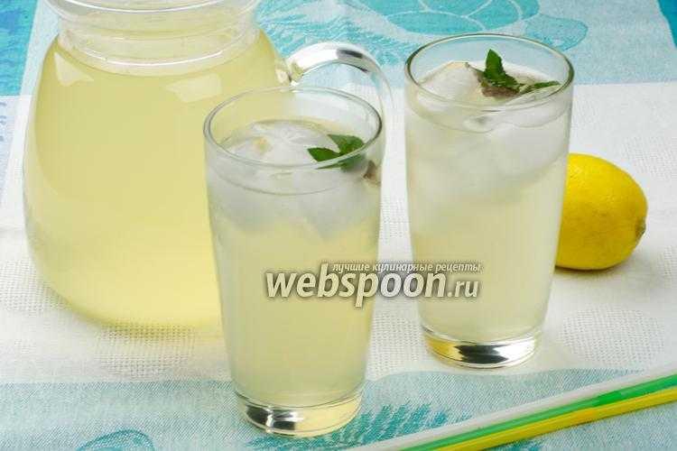 Домашний лимонад с мятой и лимоном - пошаговый рецепт