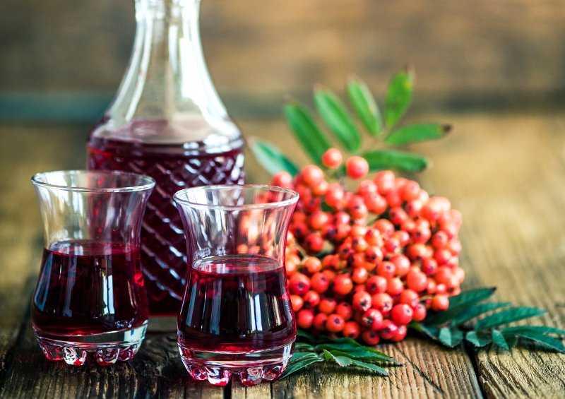 Готовим из листьев вишни домашнее вино