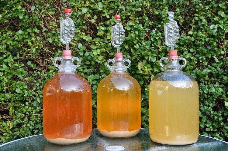Домашнее вино из березового сока – сайт о винограде и вине