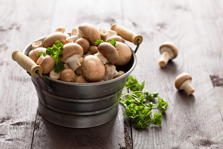 Как солить грибы - разные способы заготовки лесного урожая