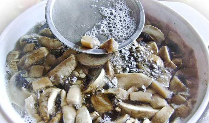 Как солить грибы рядовки на зиму: способы и рецепты (+20 фото)