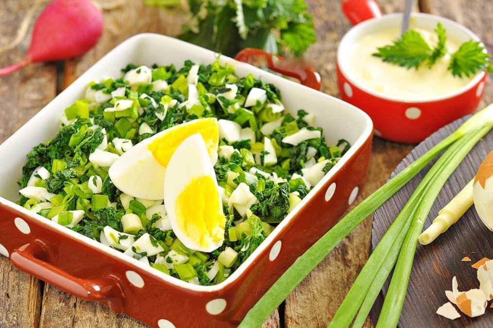 Как приготовить салат из крапивы на скорую руку: поиск по ингредиентам, советы, отзывы, пошаговые фото, видео, подсчет калорий, изменение порций, похожие рецепты