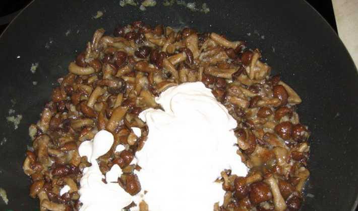 Грибная подлива из замороженных грибов - самый вкусный рецепт