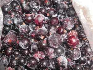 Как хранить смородину свежей в холодильнике, морозилке, замороженную