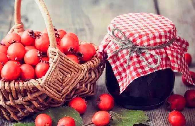 Боярышник: лучшие рецепты заготовок на зиму
