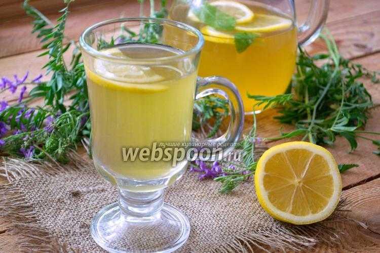 «тархун»: рецепты напитка в домашних условиях из свежего и сухого эстрагона, с мятой, с лимоном, состав и калорийность домашнего лимонада
