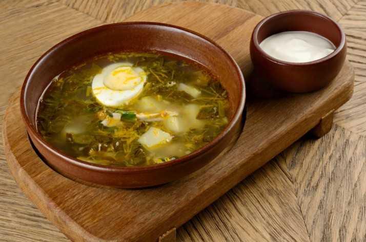 Зеленый борщ с щавелем и яйцом. 5 классических рецептов приготовления