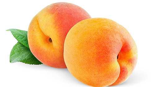 Вино из персиков в домашних условиях - пошаговый рецепт