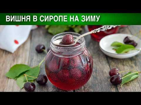 Сиропы на зиму: 59 рецептов заготовок » сусеки