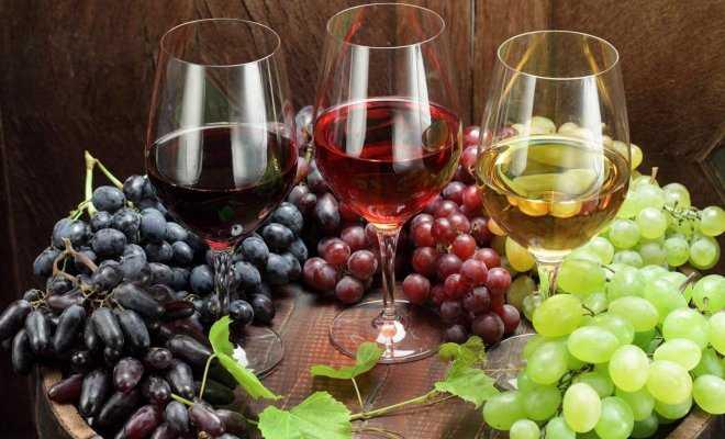 Как сделать из домашнего виноградного сока вино: рецепты приготовления.