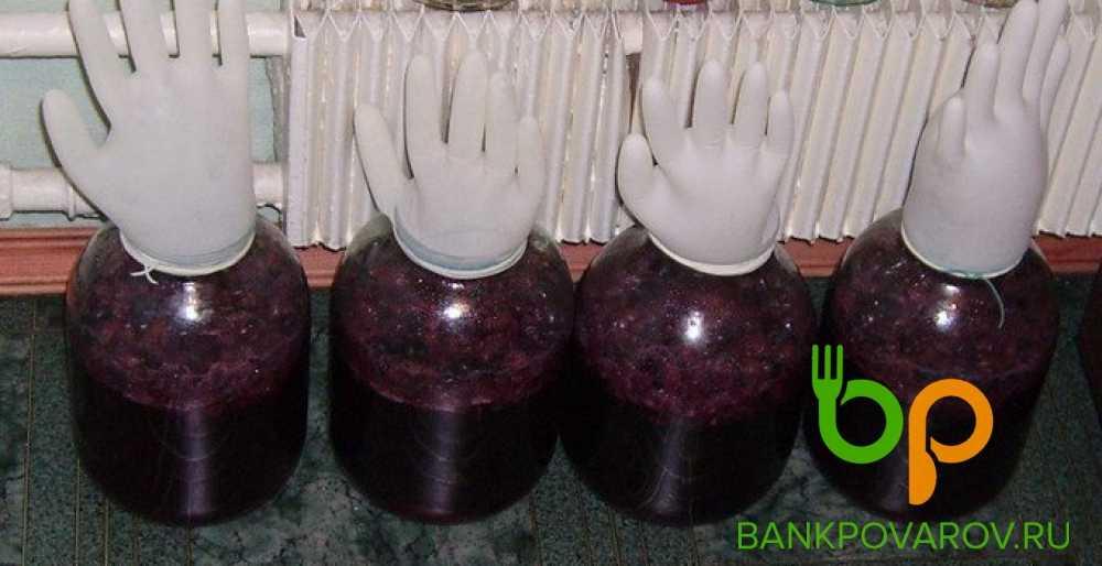 Вино из ревеня: рецепты приготовления в домашних условиях
