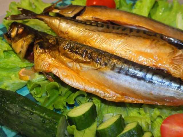 Маринование и засолка рыбы для копчения в домашней коптильне