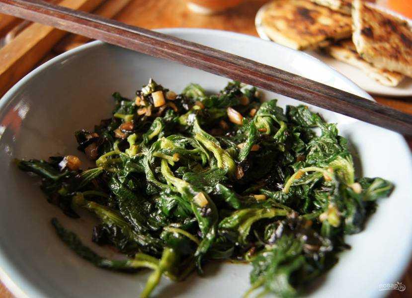 Салат с крапивой: польза и вред, рецепты очень вкусных крапивных салатов