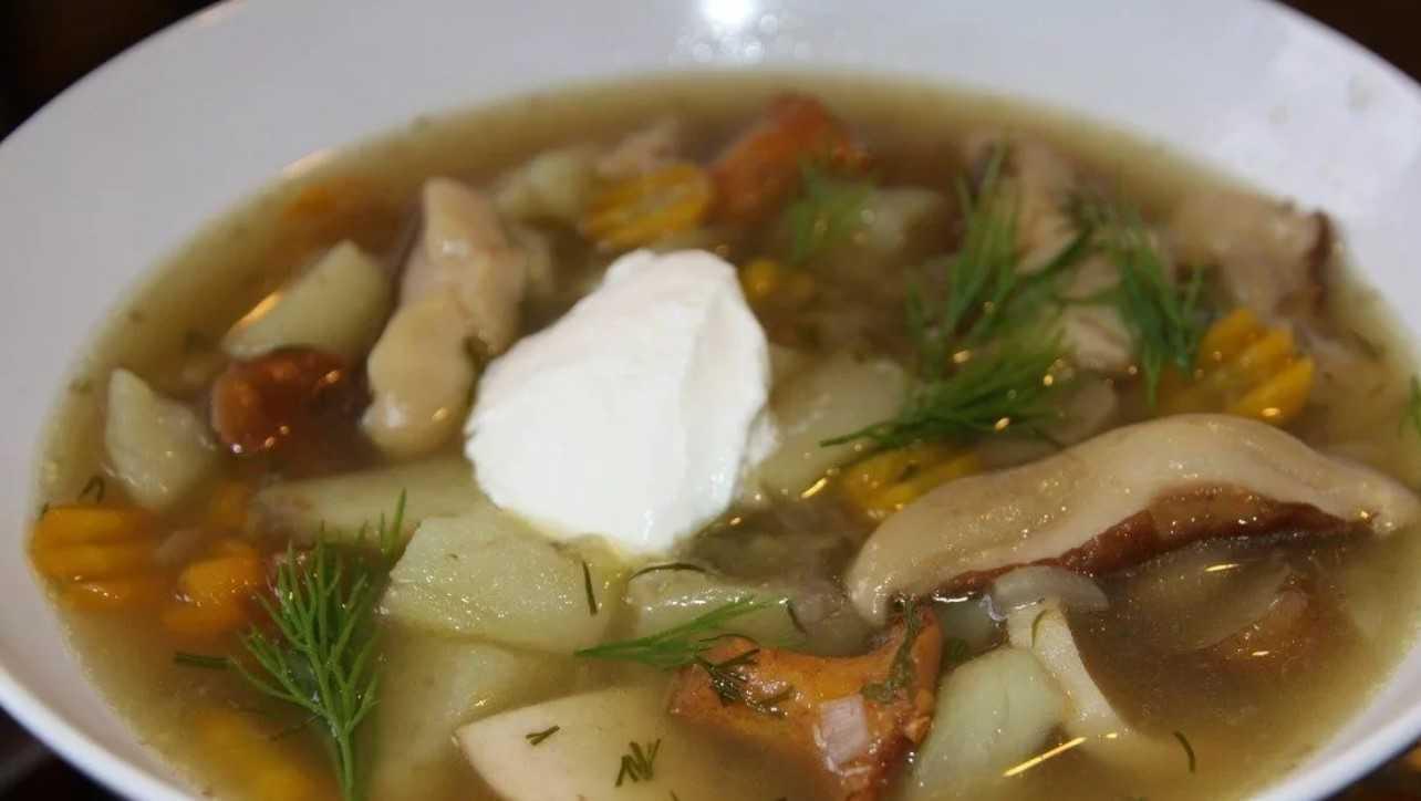 Суп из солёных груздей: рецепты, как варить