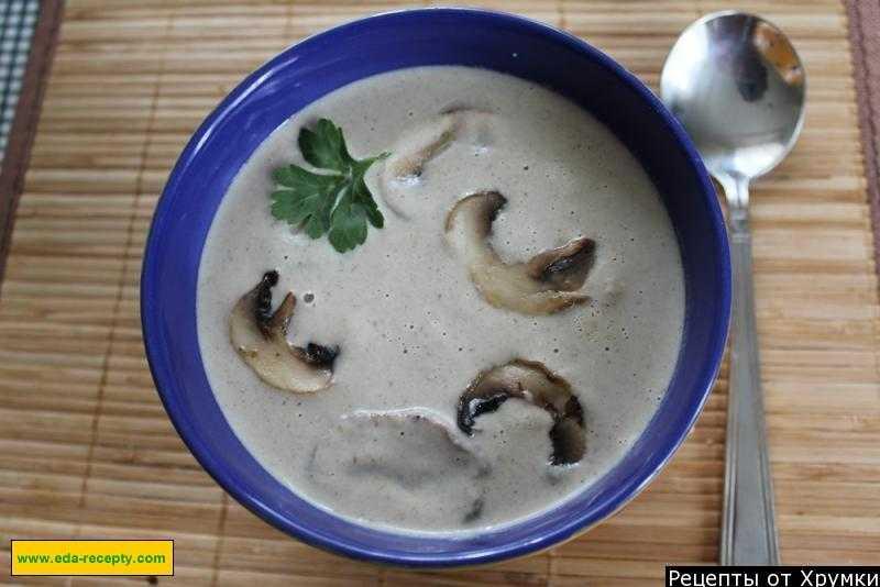 Сырный суп-пюре с грибами: рецепт приготовления с курицей и плавленными сырками, а также небольшие советы и секреты для хозяек