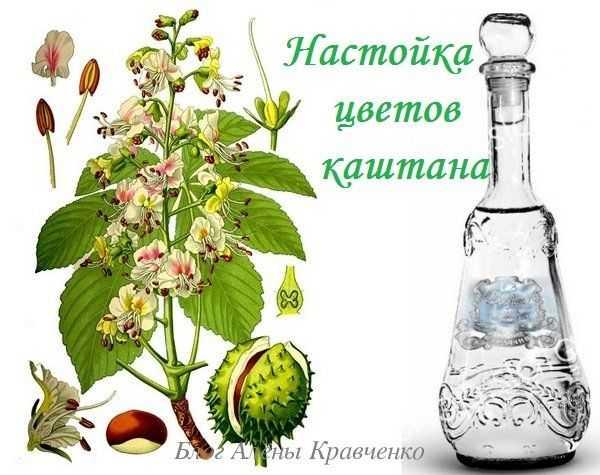 Настойка из ягод шиповника на спирту