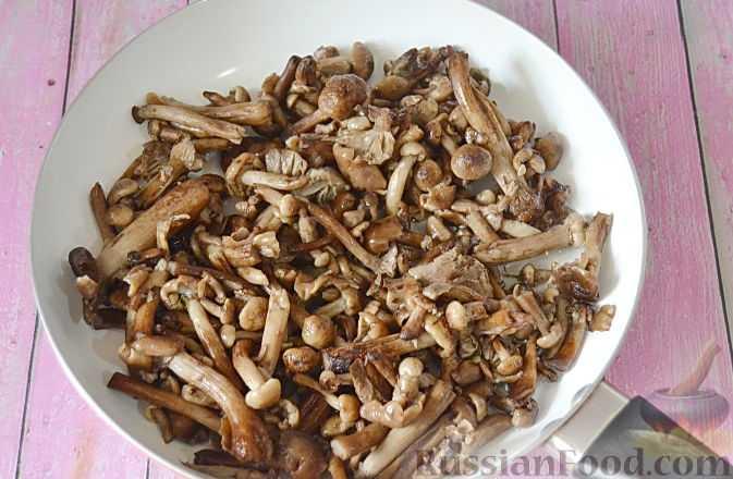 Как приготовить соус из сухих грибов и грибного порошка: рецепты заправок для разных блюд