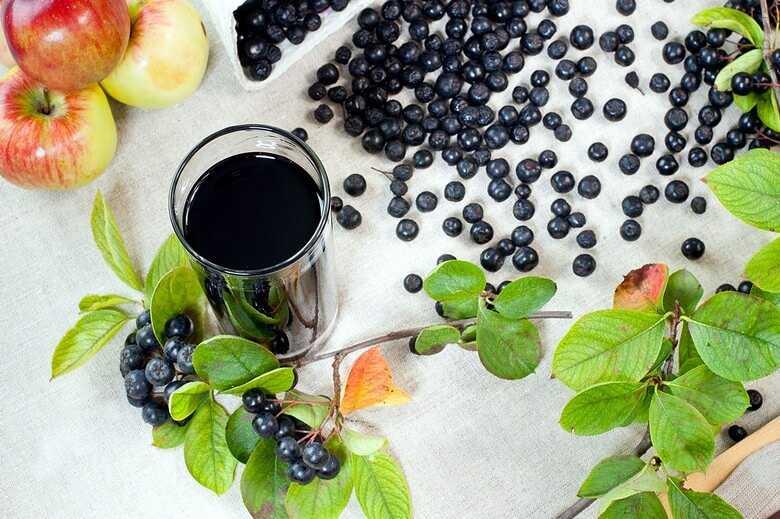 «нежинская», польский jarzębiak и другие настойки из красной рябины