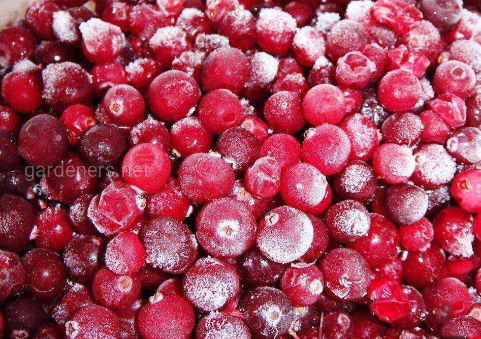 Варенье из голубики: рецепты на зиму