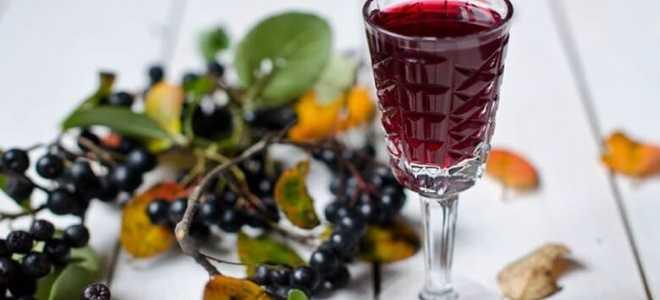 Вино из ранеток: простые рецепты приготовления в домашних условиях