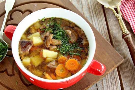 Суп из подберезовиков – 4 простых рецепта