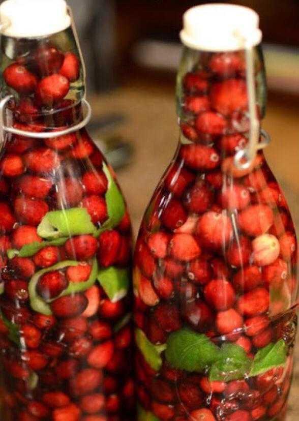 Домашняя клюква на коньяке: рецепт настойки и наливки