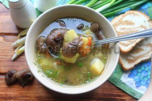 Грибной суп с замороженными опятами - полный пошаговый рецепт с фото и описанием