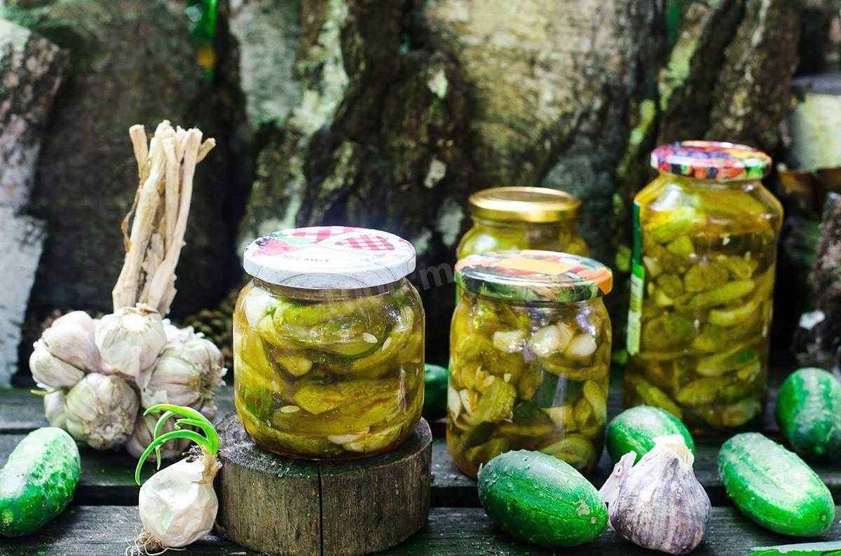 Огурцы с кабачками на зиму: рецепты простые и вкусные с фото и видео