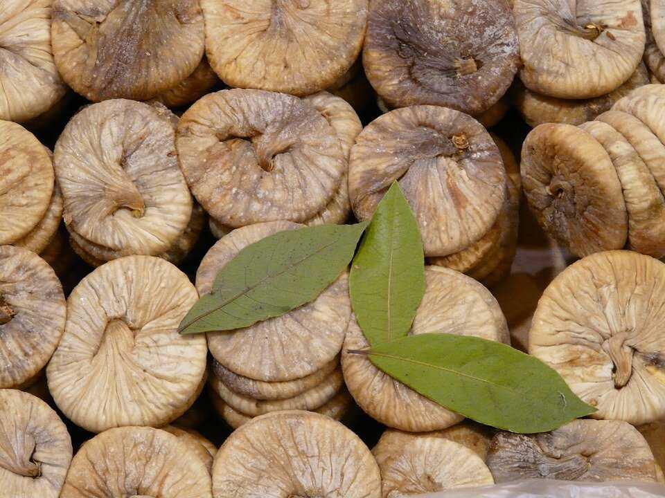Инжир сушеный — польза и вред