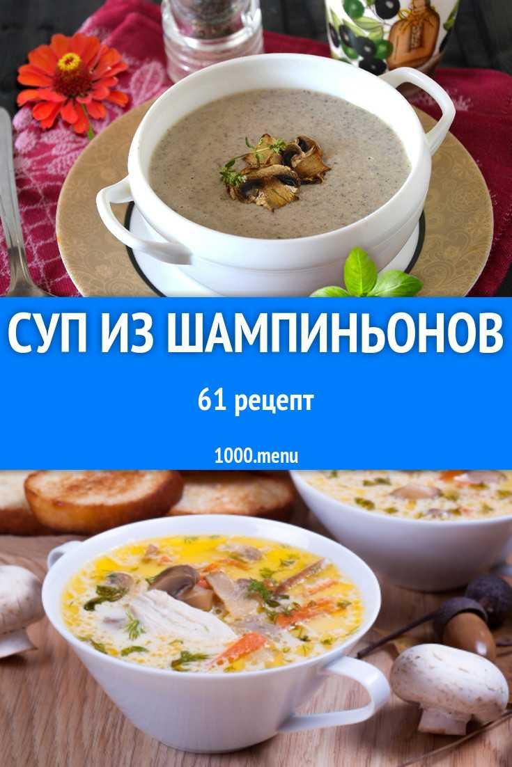 Как приготовить суп из сушеных грибов: сварить грибной из опят, рецепты приготовления, сколько варить из порошка, видео