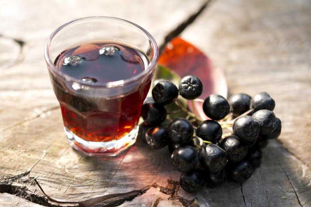 Черноплодная рябина польза и противопоказания, рецепты