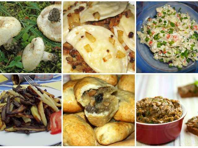 Пельмени с грибами грузди: рецепт пошагово с фото и видео, где показано, как приготовить блюдо