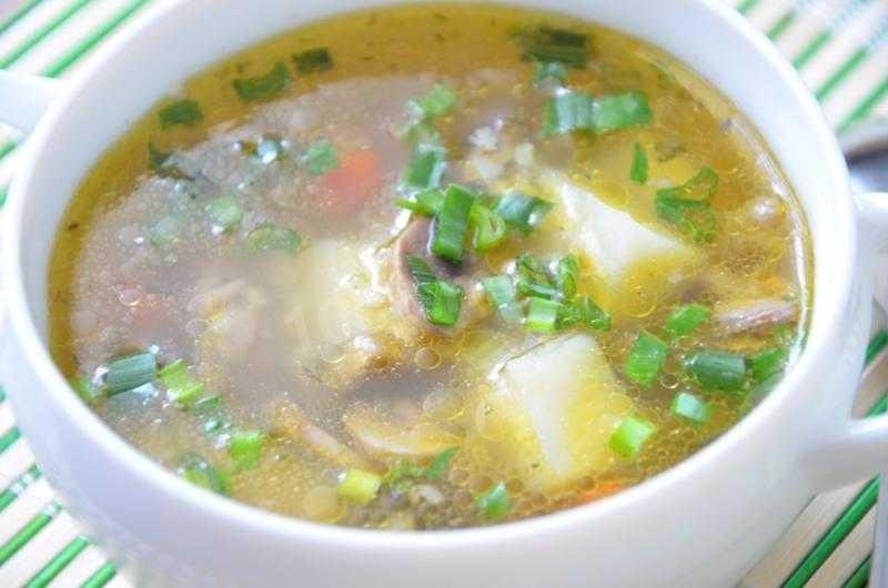✅ как правильно варить суп из рыжиков, простой и вкусный пошаговый рецепт с фото - tehnoyug.com