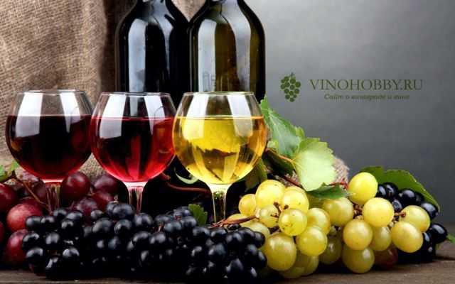 Вино из яблочного жмыха после соковыжималки - простые пошаговые рецепты для приготовления в домашних условиях