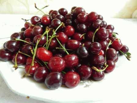 Желе из вишни: польза и вред, состав, с желатином, с пектином, на зиму, из свежей, замороженной, сушеной