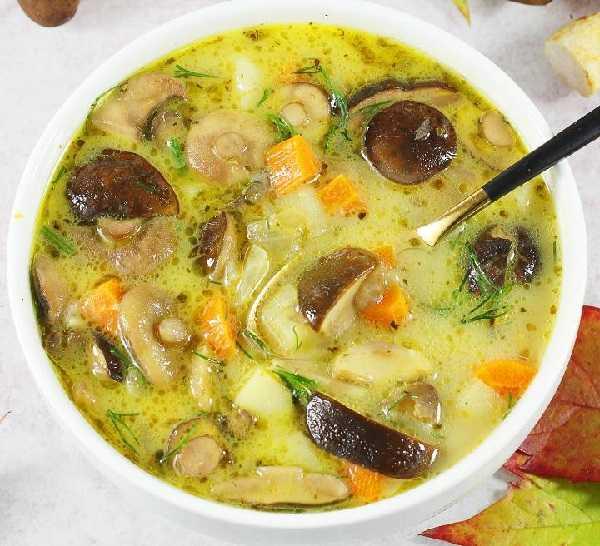Нежный ароматный суп-пюре из сушеных грибов. рецепт приготовления и разновидности