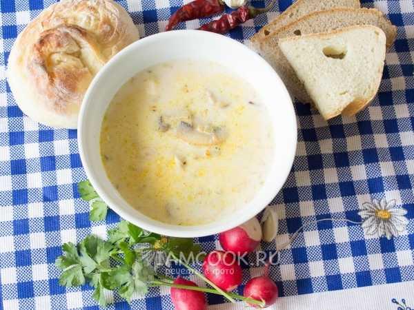 Суп с грибами и плавленным сыром – нежный вкус французской кухни: рецепт с фото и видео