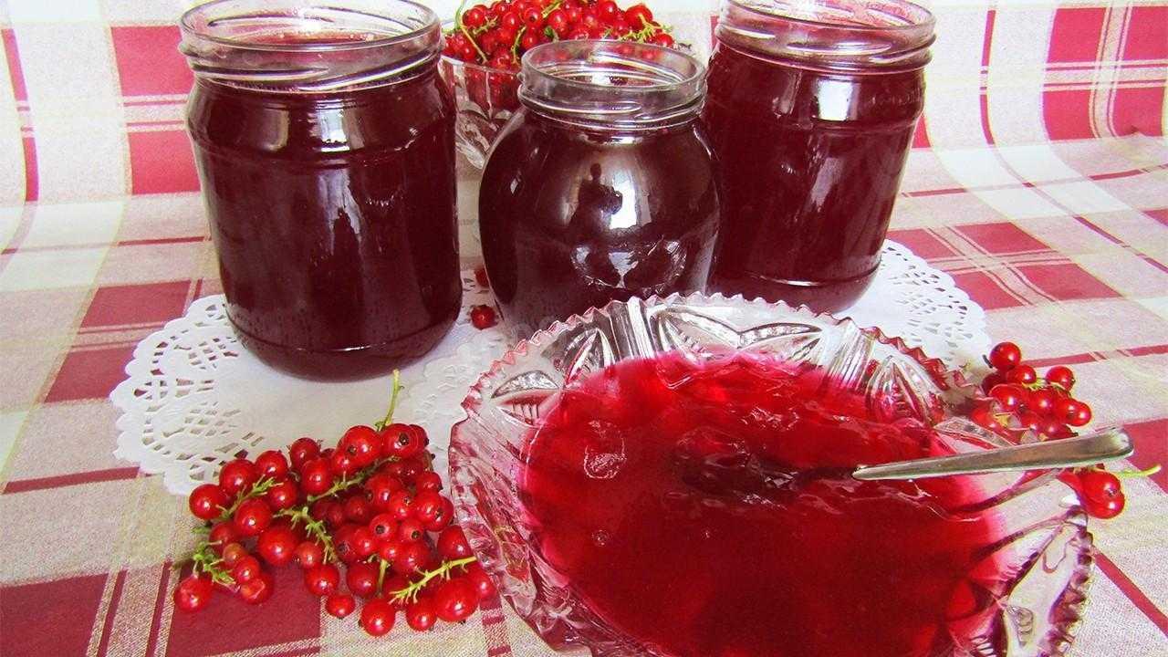 Лёгкий и вкусный десерт – желе из варенья. простые и оригинальные рецепты желе из варенья с желатином и агар-агаром - womens-24