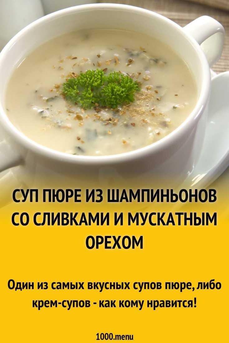 Суп-пюре со сливками: рецепты приготовления из опят, вешенок или лисичек, из лука порея, брюссельской капусты, а также, чем можно заменить сливки?