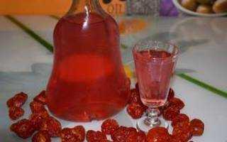 Домашняя водка на гранате: технология производства и как правильно хранить готовый напиток, методы изготовления своими руками