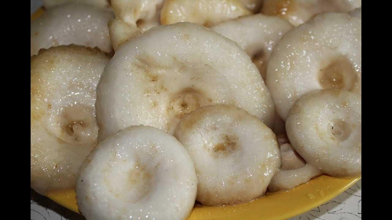 Как солить грибы на зиму в банках простой рецепт