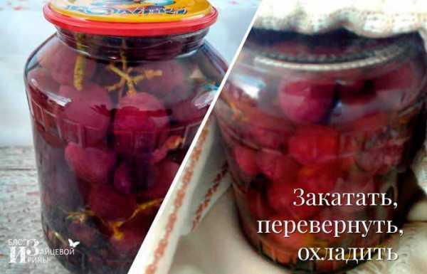 Абрикосы на зиму: 35 рецептов заготовок » сусеки