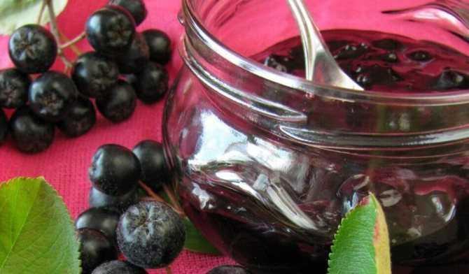 Сок из черноплодной рябины: самые популярные рецепты – как сделать сок из черноплодки на зиму в домашних условиях » сусеки
