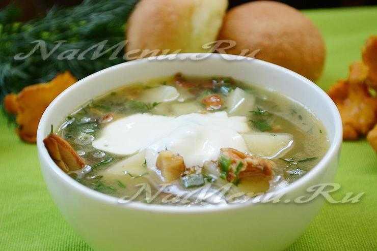 Суп с лисичками. 5 лучших рецептов - грибы собираем
