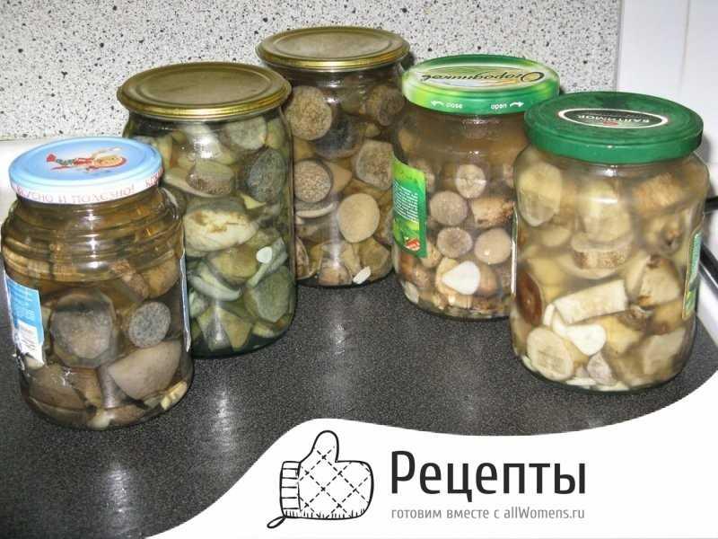 Самые лучшие рецепты засолки грибов: простые и вкусные способы как солить лесные грибы в банках, кастрюле, ведре и под гнетом в домашних условиях. какие грибы подходят для засолки, и сколько дней солят грибы?   qulady